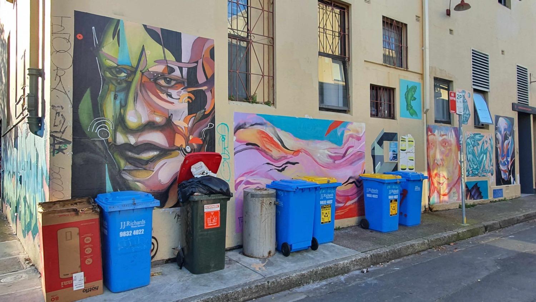 Goddard Street (West) Newtown Street Art Sydney Art Out Live