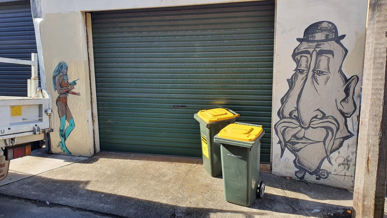 Violet Street Surry Hills Street Art Sydney (1) Art Out Live