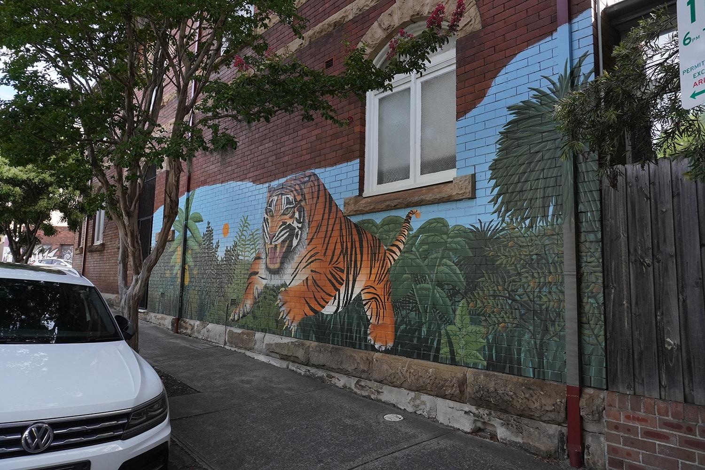 Cambridge Street Enmore Street Art Sydney Art Out Live Ellie Pitt