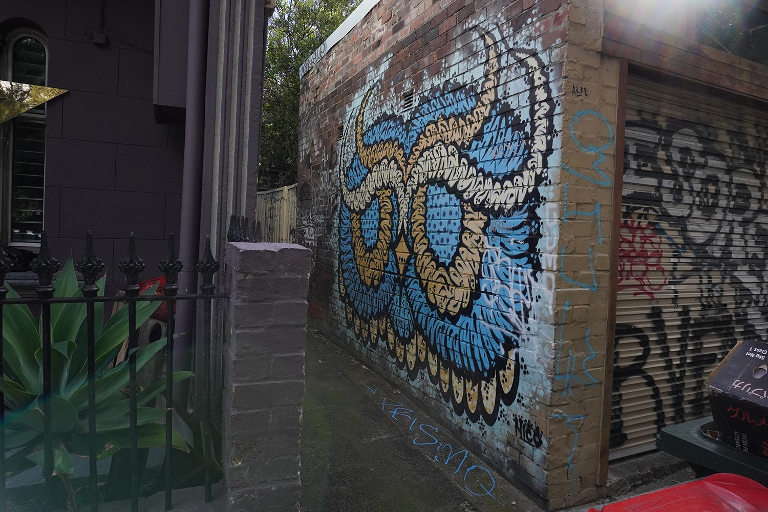 Dass Lane Enmore Street Art Sydney Art Out Live 7 Captain Earwax