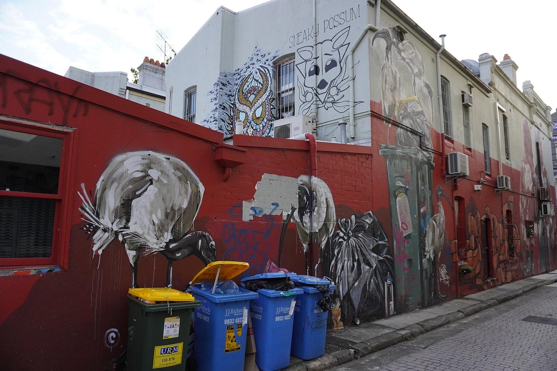 Teggs Lane Chippendale Street Art Sydney Art Out Live January 2021 Scottie Marsh