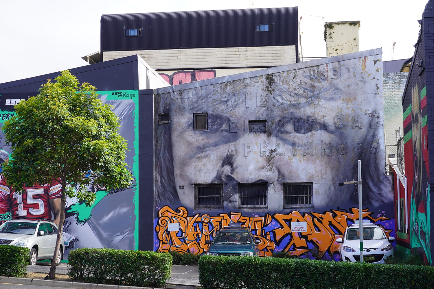 Woodburn Street Redfern Street Art Sydney Art Out Live February 2021 (2) Guido Van Helten
